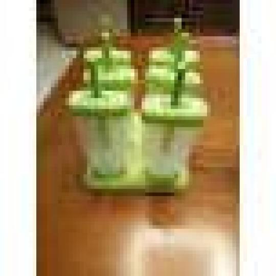 美之扣 家用冻冰糕冰块冰棒冰棍做雪糕的模具带盖自制创意冰棍冰淇 果冻1套 1套6个装 晒单图