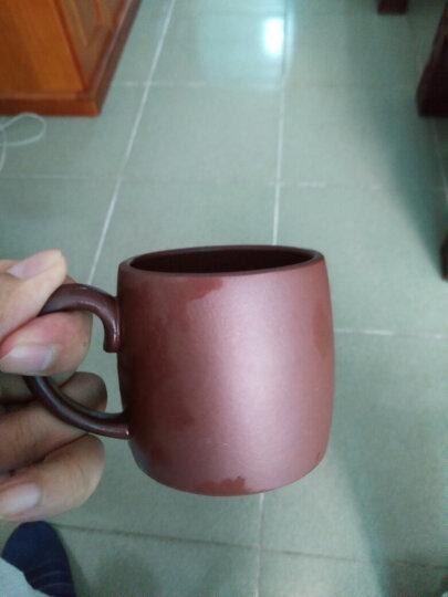 茗阳 宜兴紫砂杯纯全手工茶盏小杯带把品茗杯主人杯功夫茶杯茶具茶盅紫泥金鼎 晒单图