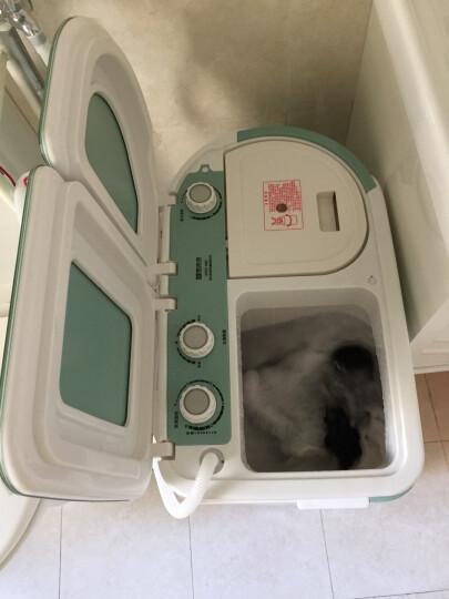 司迈特(SMARTEM) 3.5公斤半自动洗衣机小型迷你波轮母婴儿童双桶双缸脱水机 XPB35-688S抹茶绿 晒单图