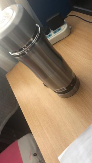 泰澄出国旅行电热水壶小容量不锈钢迷你电水杯 100v-250v全球通用电压快速加热 魅力银 晒单图