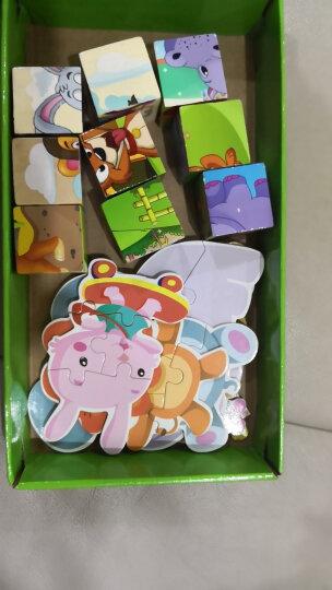 小硕士儿童益智玩具积木拼图男孩女孩益智开发玩具1-2-3-6岁幼儿园早教 拼图六面画 动物六面画+6张卡片拼图+收纳袋 晒单图
