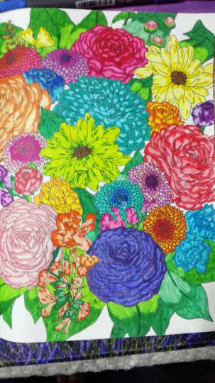 秘密花园涂色学院丛书:自然奇境 晒单图