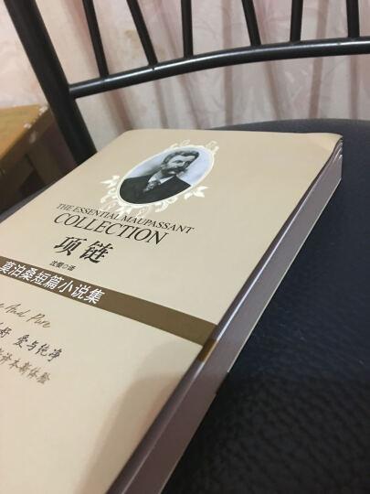 莫泊桑短篇小说集:项链 晒单图