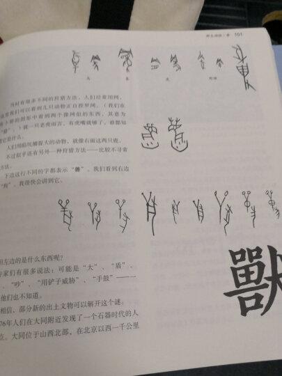 汉字王国 晒单图