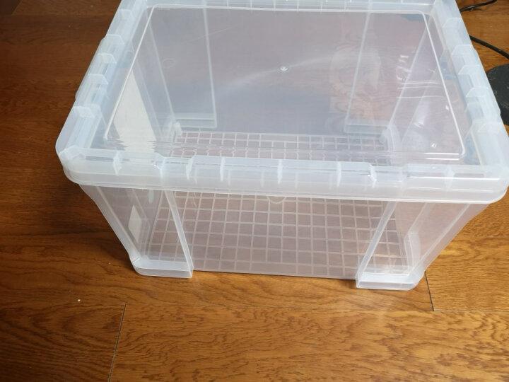 禧天龙Citylong 45L大号高透可视收纳箱加厚抗压环保塑料储物箱家用整理箱大力士系列 6030 晒单图