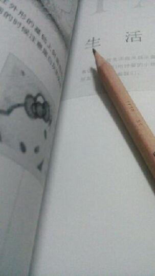铅笔素描入门 一本就够了 素描绘制技法 素描基础教程 铅笔素描从入门到精通 飞乐鸟书籍 素 晒单图