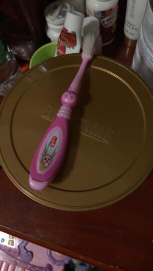 卡芭兔(cabato) 儿童牙刷 新款 软毛按摩护龈训练护齿宝宝牙刷3-6岁6-12岁 绿色 晒单图
