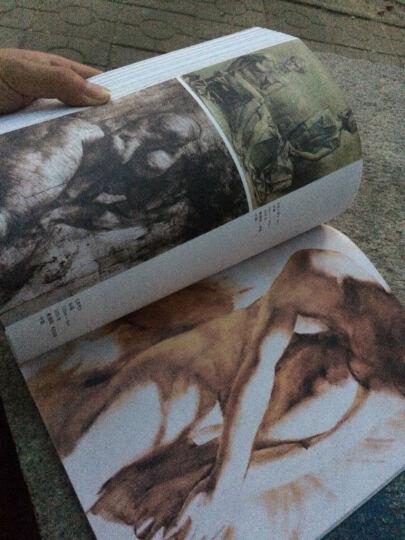 中央美术学院基础教学教材·解构人体:艺术人体解剖 晒单图