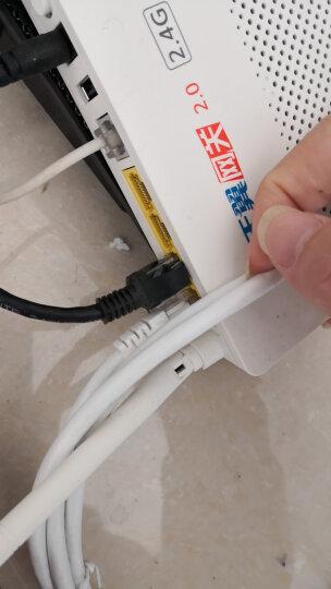 山泽(SAMZHE)超五类网线 工程级高速CAT5e类百兆电脑网络连接跳线 成品网线 贝吉色5米 ZW-05 晒单图