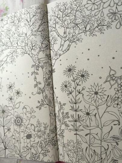 秘密花园+魔法森林(套装独家赠品版) 晒单图