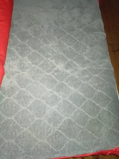南极人电热毯电褥子单人 双人双控智能控温电热垫电热毯 加大双人(1.8*2米)120W【驼色无纺布】 晒单图