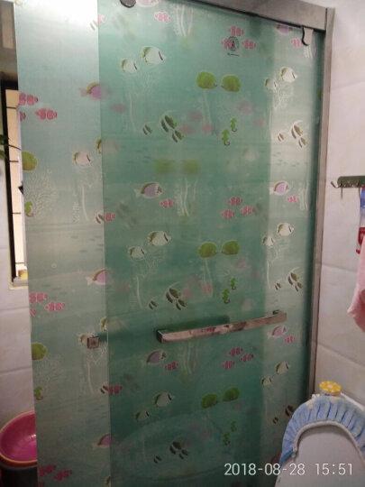 虹语荷 自粘玻璃贴膜透光不透明防晒玻璃贴纸窗贴浴室卫生间磨砂窗户玻璃门贴膜遮光窗花纸带胶 绿丁香 0.9*3米 晒单图