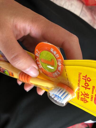 保宁(B&B)婴儿儿童牙刷 口腔护理柔软刷毛一阶段牙刷2-4岁 晒单图