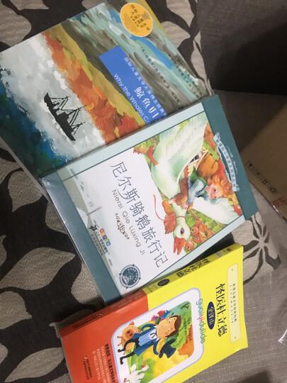 新课标小学语文阅读丛书:尼尔斯骑鹅旅行记 (第3辑 彩绘注音版) 晒单图