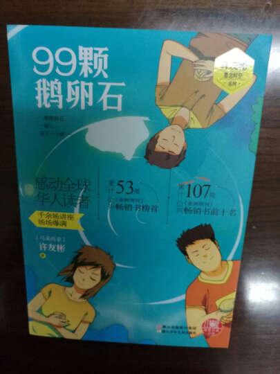 红蜻蜓暖爱长篇小说:99颗鹅卵石 晒单图