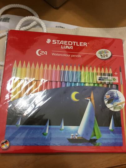 德国施德楼(STAEDTLER)水溶性彩铅笔彩色铅笔24色涂色填色彩笔绘画笔套装13710C24(赠画笔) 晒单图