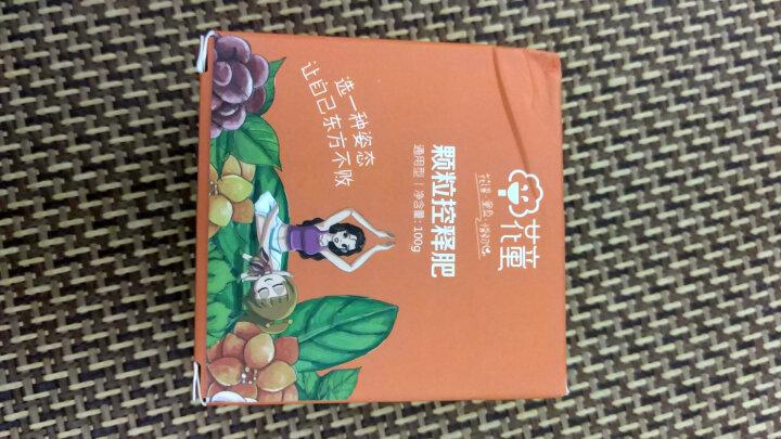 花童 颗粒缓控释肥长效肥 家庭绿植花卉通用型 园艺花肥料 100g/盒 晒单图