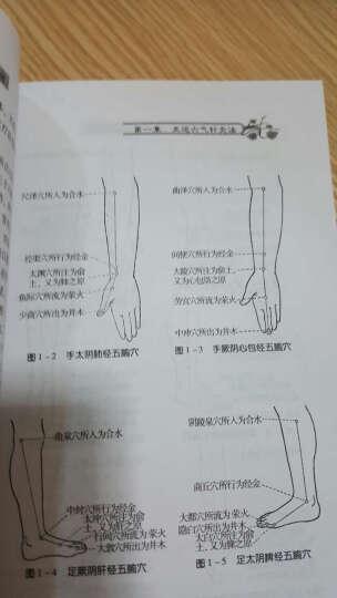 中医太极三部六经体系:针灸真原 晒单图