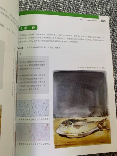 材料与工具的魅力 图说水彩画技法102例 晒单图