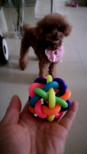【1件9折】Max Dog 宠物玩具 狗狗玩具 铃铛七彩玩具球 好玩的麻花球 中号 晒单图