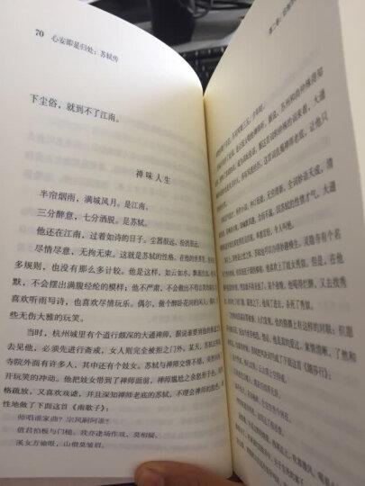 心安即是归处:苏轼传 晒单图