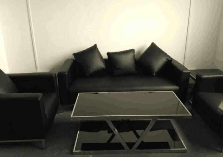 轻嵩北京办公家具办公沙发休闲沙发会客沙发接待休闲沙发多色可选 五个抱枕 晒单图