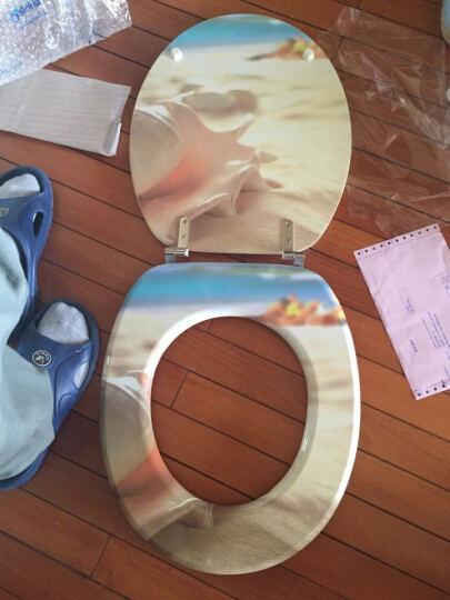 siona印花马桶盖板 通用加厚坐便器盖 木质喷漆马桶盖子 缓降静音 海边贝壳 不缓降 晒单图