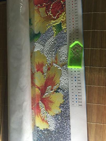 尚世纪 5D钻石画十字绣客厅新款 家和万事兴十字绣钻石绣满钻钻石画孔雀 240*96cm满钻 32色 381 晒单图
