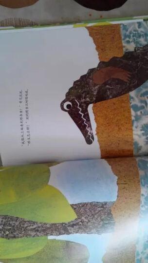 四届凯迪克奖得主李欧·李奥尼经典作品集(第1辑·幼儿绘画)(套装全7册) (爱心树童书) 晒单图