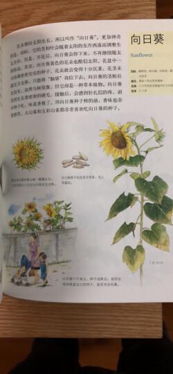 水边的自然课(套装共4册) 晒单图