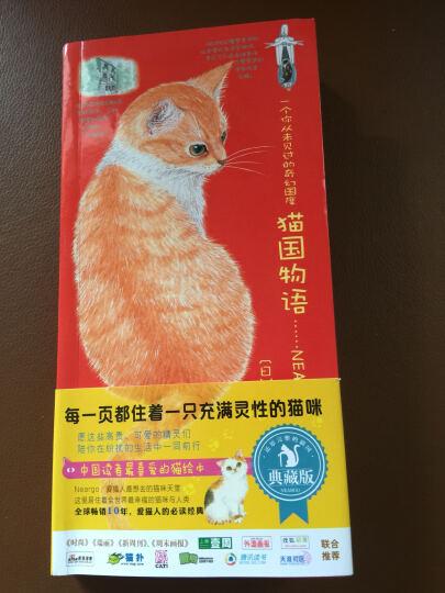 一个你从未见过的奇幻国度:猫国物语(典藏版) 晒单图