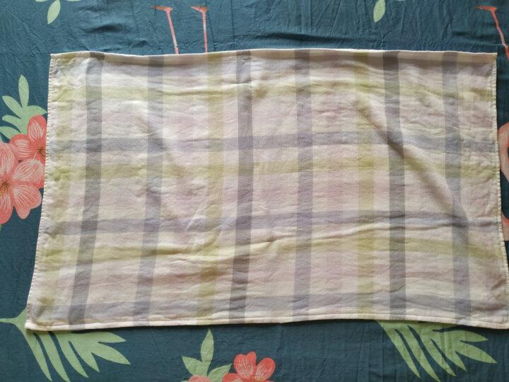 梦特娇(Montagut)毛巾家纺 纱布方格枕巾单条 纯棉柔软 亲肤吸汗 简洁大方 蓝色 50x80cm/条 晒单图