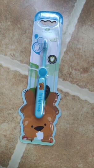 英国小树苗 儿童婴儿训练软毛牙刷A套装 2支装 蓝+粉 适合1-3岁宝宝 晒单图