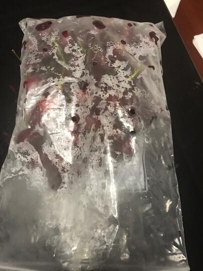 美果汇 山东莱阳丰水梨2.5kg 新鲜水果包邮梨子 晒单图