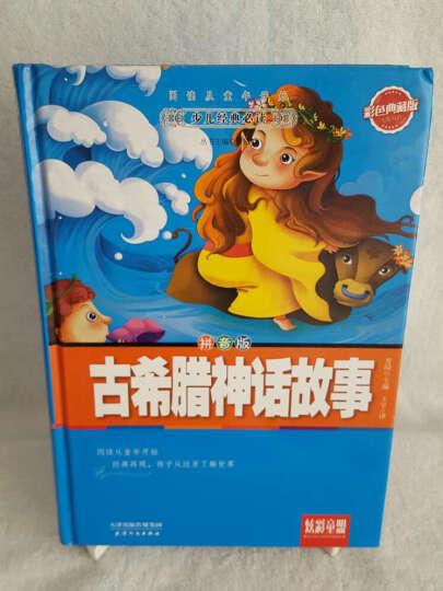 炫彩童盟:古希腊神话故事(彩色典藏版 拼音版) 晒单图