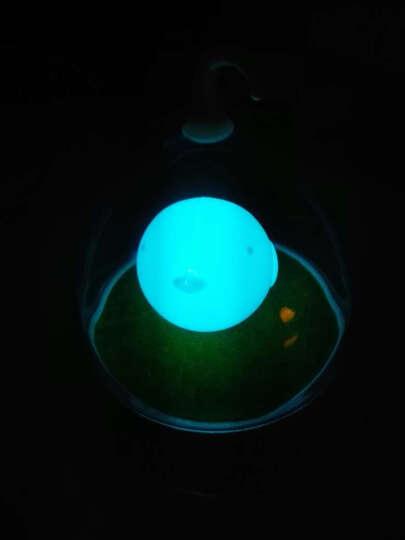 欣兰雅舍 创意led小夜灯声控感应灯触摸儿童喂奶灯氛围卧室床头灯睡眠 触控-慧蓝鸟 晒单图