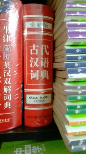 古代汉语词典(全新版) 晒单图