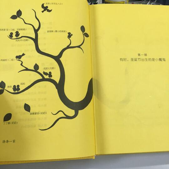 我亲爱的甜橙树(5周年版) 晒单图
