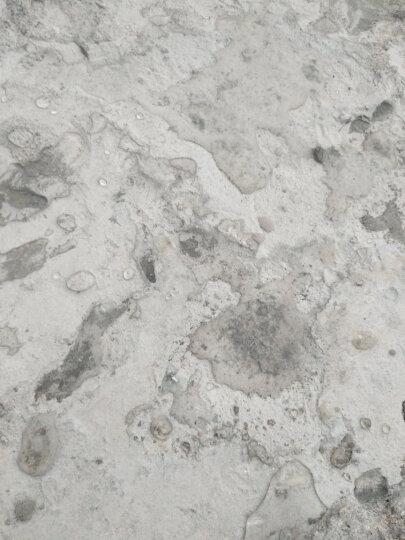 莱仕德(LAISHIDE)莱仕渗透型防水涂料卫生间防水补漏材料胶剂 强力渗透耐磨型  12倍浓缩-1L稀释后13L送工 晒单图