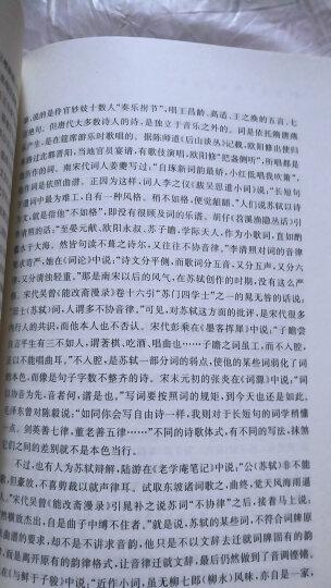 名家通识讲座书系:中国古代诗学十五讲 晒单图