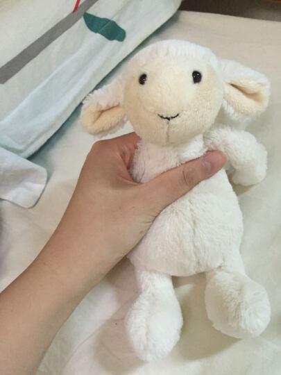 Jellycat 英国jellycat经典害羞系列害羞羊羔白色超柔软毛绒玩具公仔 白色 18cm 晒单图
