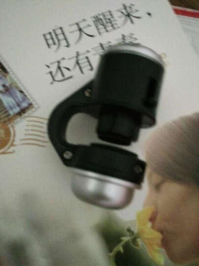 埃菲凡 通用型手机镜头显微镜30X/60X倍放大镜微距显微镜 30X显微镜 晒单图