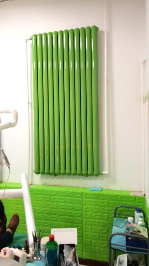 亿润 暖气片艺术家用水暖壁挂式装饰钢制供热卫生间钢二柱安装散热器家用水暖散热片 (升级)大水流双水道370mm高 晒单图