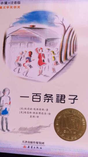 一百条裙子(注音版)/国际大奖小说儿童文学故事读物 教师推荐给孩子的100本书 晒单图