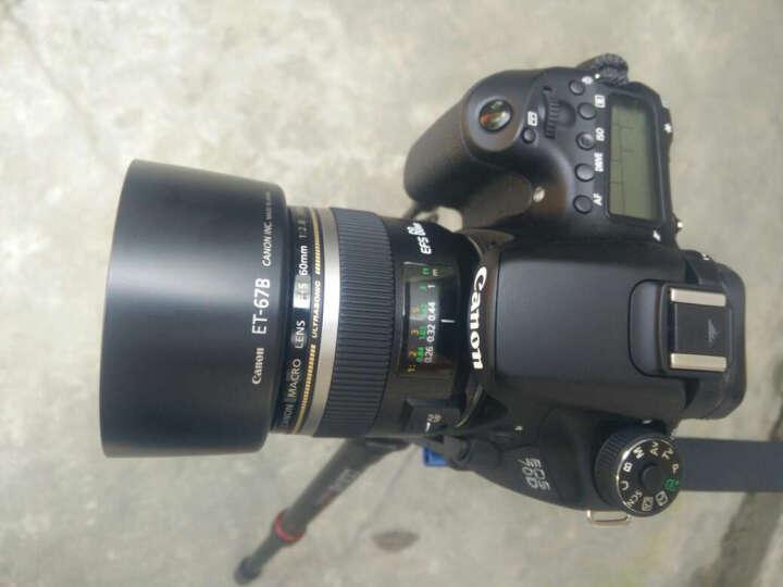 佳能(Canon) EF-S 60mm f/2.8 USM微距镜头 套装 晒单图