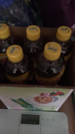 康师傅 茉莉蜜茶 茶饮料 500ml/550ml*6瓶 整箱装(新老包装自然发货) 晒单图
