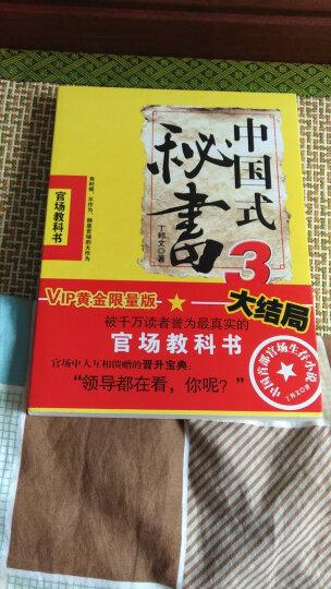 中国式秘书(3)(简)/丁邦文 晒单图