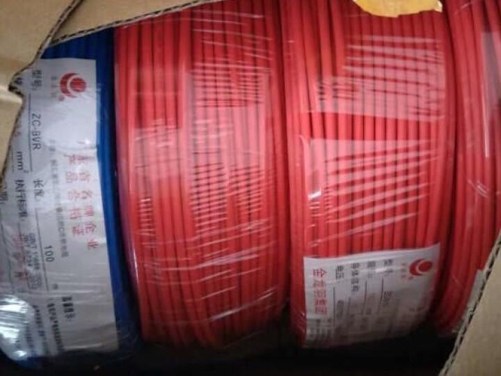 金龙羽 电线电缆ZR/ZC BVR2.5平方 国标铜芯线单芯多股软线 阻燃家装线100米 阻燃/蓝色多股 (软线) 零线 晒单图