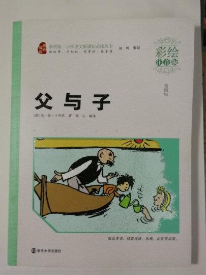 爱的教育(彩绘注音版)/小学语文新课标必读丛书,智慧熊图书 晒单图