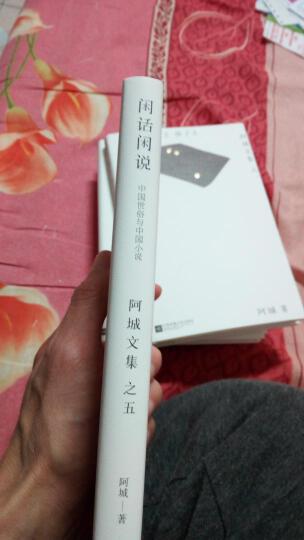 闲话闲说:中国世俗与中国小说 晒单图